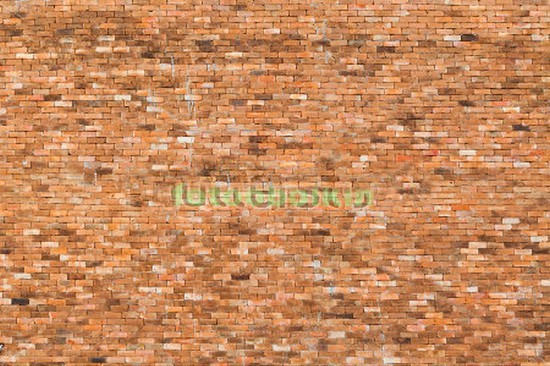 Фотообои Стена из кирпичей