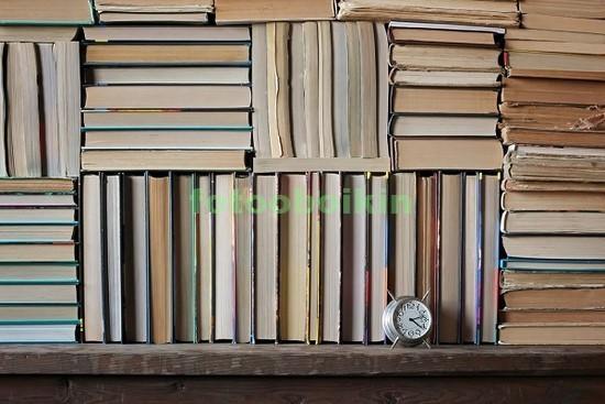 Фотообои Стопки из книг