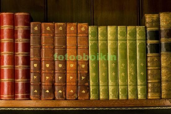 Фотообои Полка со старинными книгами