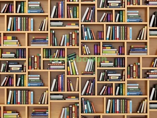 Полки с множеством книг