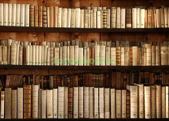 Фотообои Полки с старыми книгами