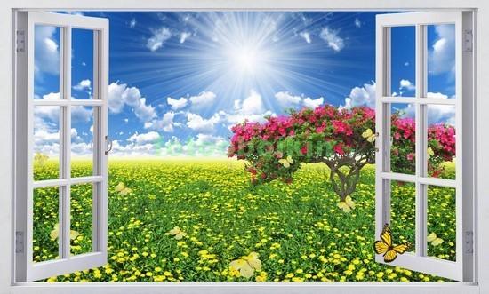 Фотообои Окно с видом на поле