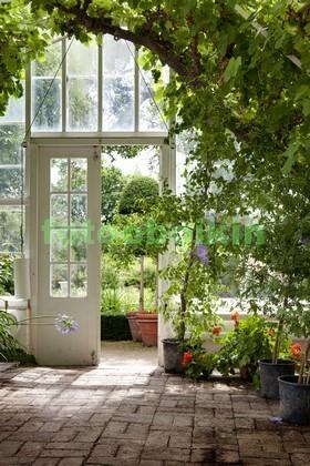 Фотообои Летний сад