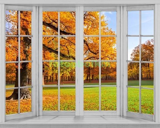 Фотообои Окно с видом на осенний парк