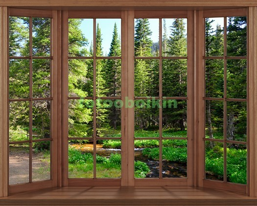 Фотообои Окно с видом на опушку леса