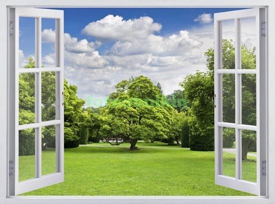 Фотообои Окно с видом на парк