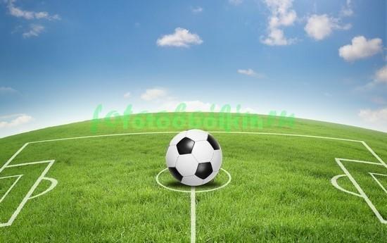 Фотообои Футбольное поле