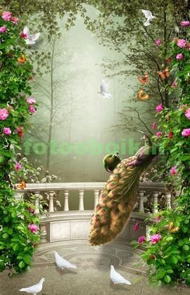 Фотообои Сад с павлином