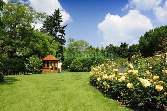 Фотообои Сад с цветами и газоном