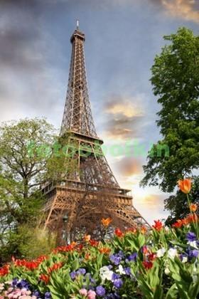 Фотообои Сад в Париже