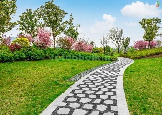 Фотообои Тропинка в зеленом саду