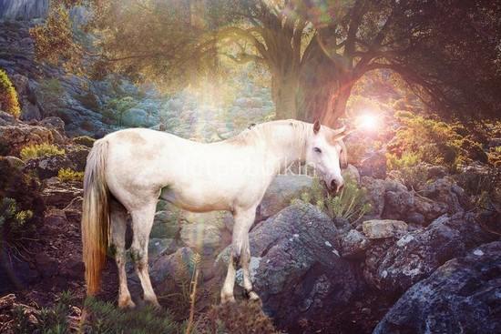 Фотообои Сказочный единорог