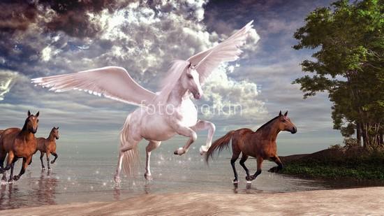 Фотообои Пегас с конями