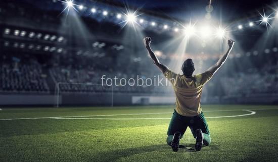 Фотообои Футболист в поле