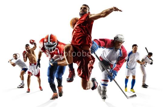 Фотообои Виды спорта