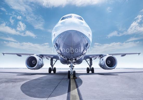 Фотообои Нос самолета