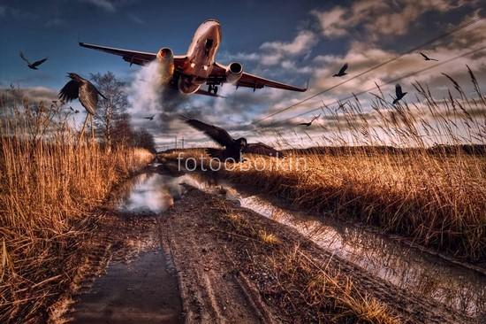 Фотообои Самолет над дорогой