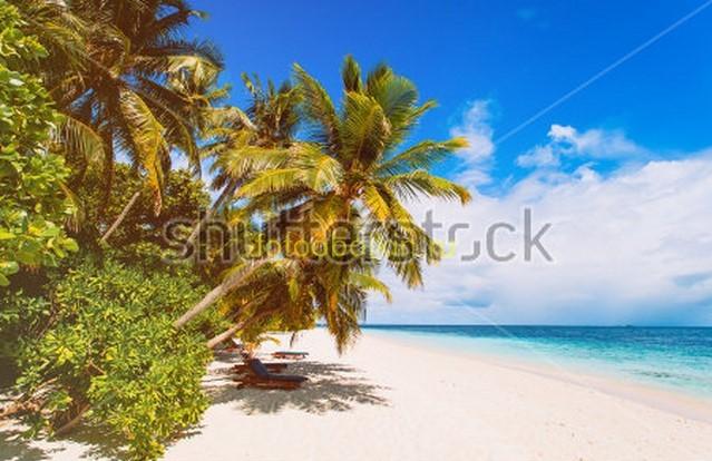 Фотообои Остров с пальмами у берега