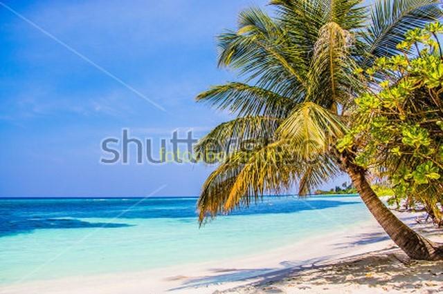 Фотообои Пальмы и острова