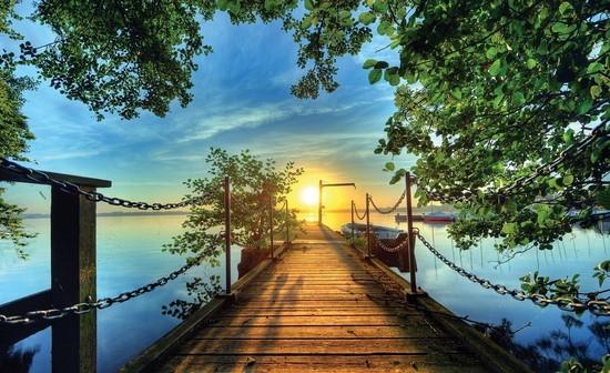 Фотообои Мост освещенный солнцем