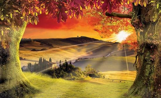 Фотообои Осенняя долина