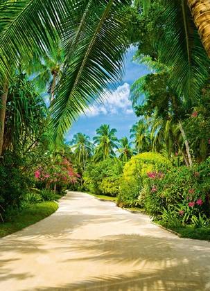 Фотообои Тропическая дорожка