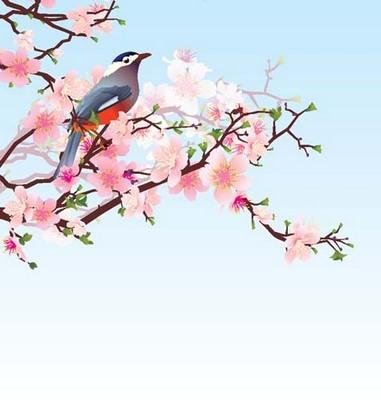 Фотообои Розовый цветок на голубом фоне с птицей на ветке