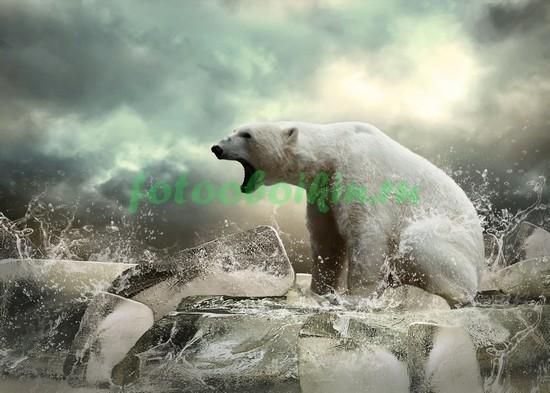Медведь на льдине