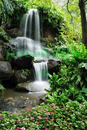 Фотообои Водопад в тропическом лесу