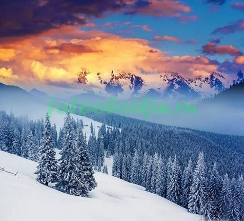 Фотообои Зимний лес в горах