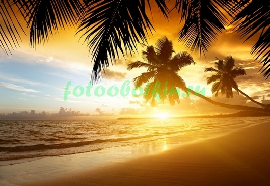 Фотообои Оранжевый закат на пляже