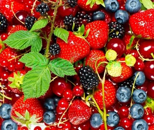 Фотообои Лесные ягоды