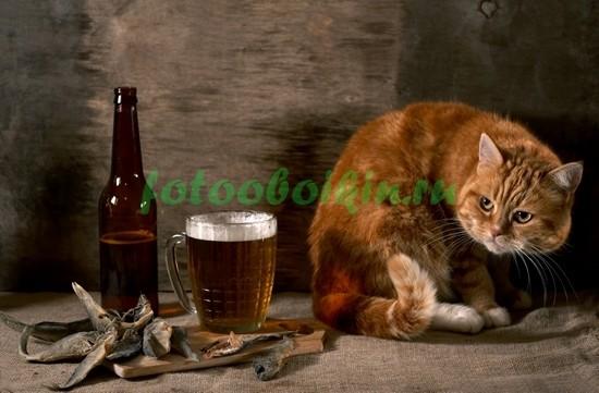Фотообои Пиво с рыбкой