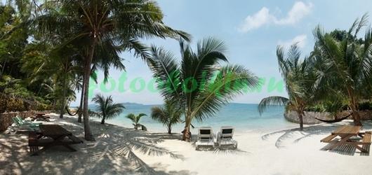 Фотообои Пляж с пальмами