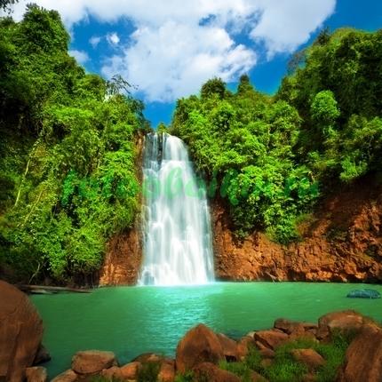 Фотообои Водопад в зелёном лесу