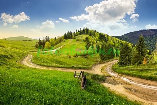 Фотообои Дорога в горах