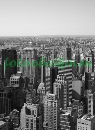 Фотообои Небоскребы черно белое фото