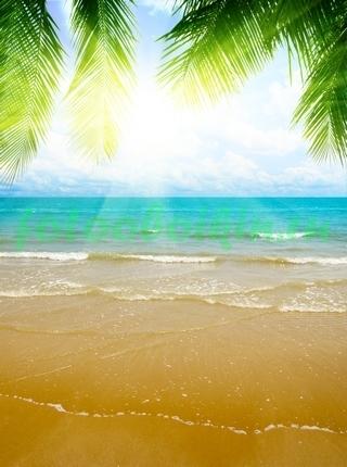 Фотообои Золотистый песок