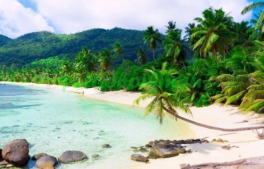 Фотообои Пляж у теплого моря