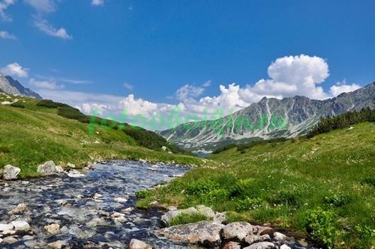 Фотообои Бурная речка в горах