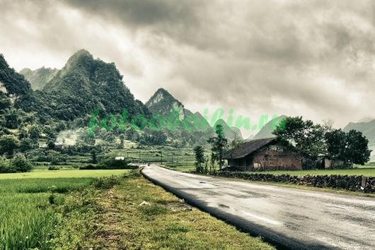 Фотообои Дорога в горы