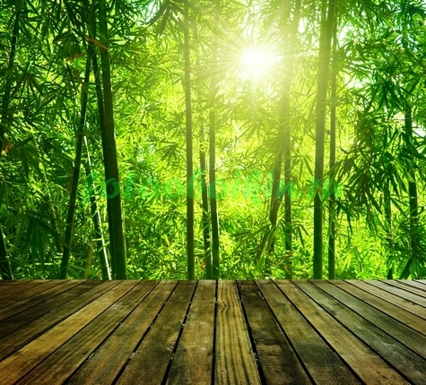 Фотообои Помост к бамбуку