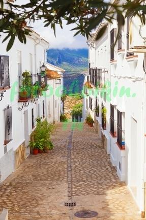 Фотообои Улица с видом на море