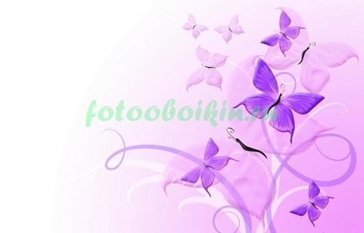 Фотообои Бабочки на сиреневом фоне