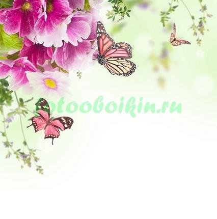 Фотообои Бабочки под цветами