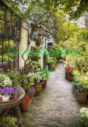 Фотообои Сад с цветами в горшка