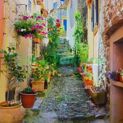 Фотообои Улица в цветочных горшках