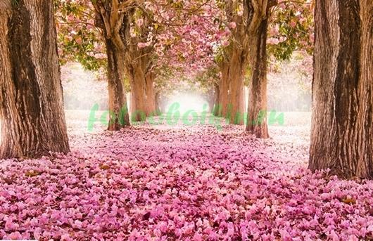Фотообои Дорога в цветах