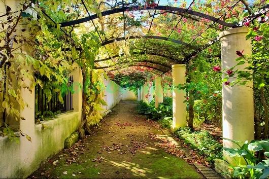 Фотообои Арка в саду
