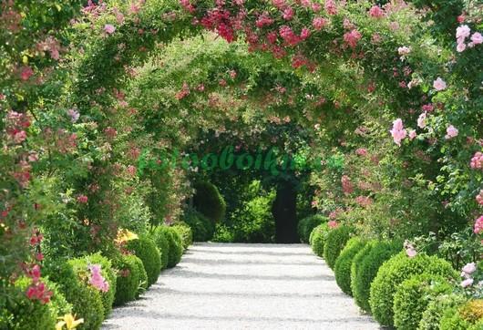Фотообои Арка с цветами 3Д